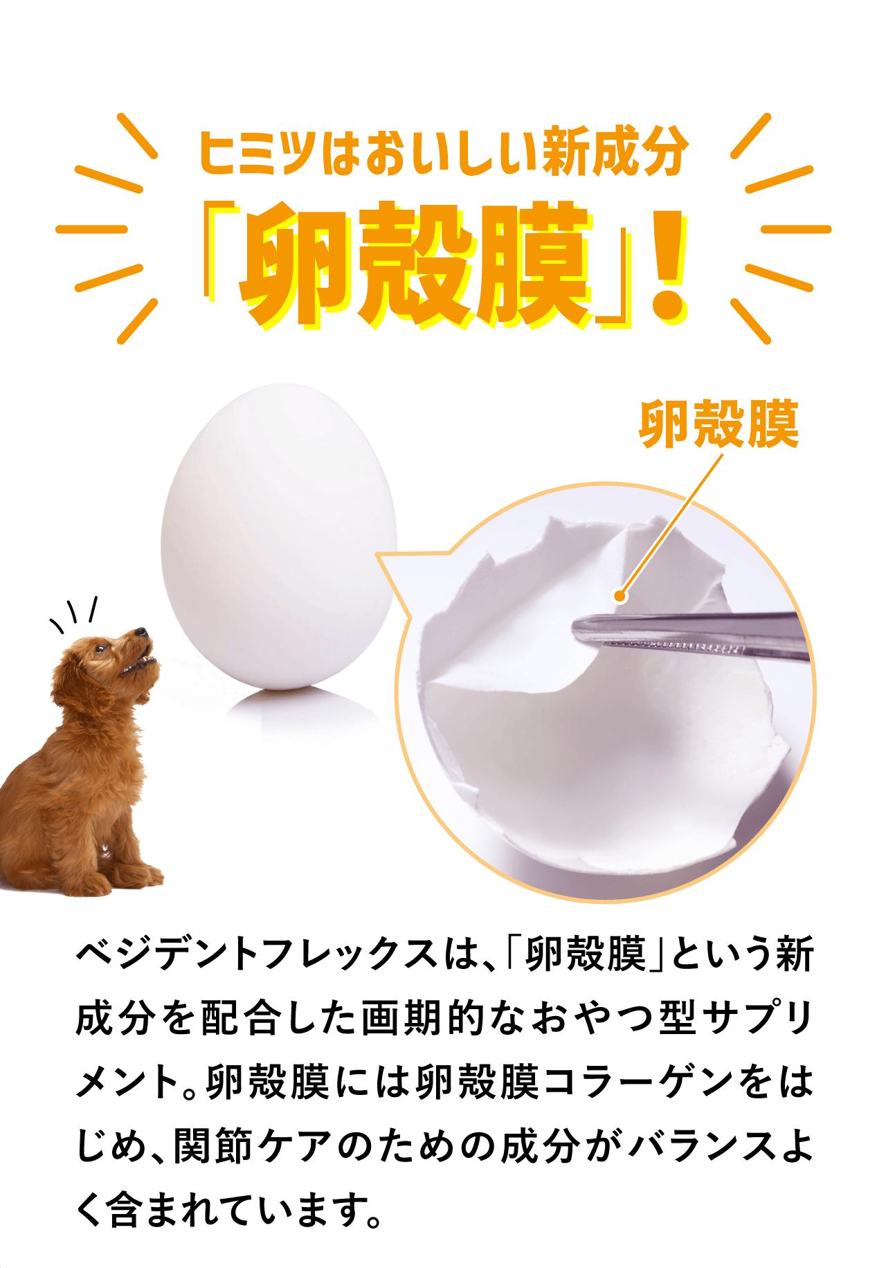 ヒミツはおいしい新成分「卵殻膜」!
